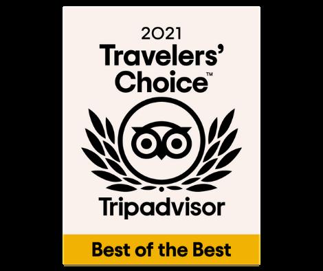 2021 TripAdvisors Travelers